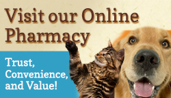 Button for online pharmacy.